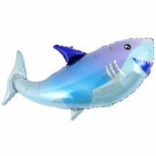 아나그램 라지쉐잎 상어풍선 생일파티 헬륨풍선